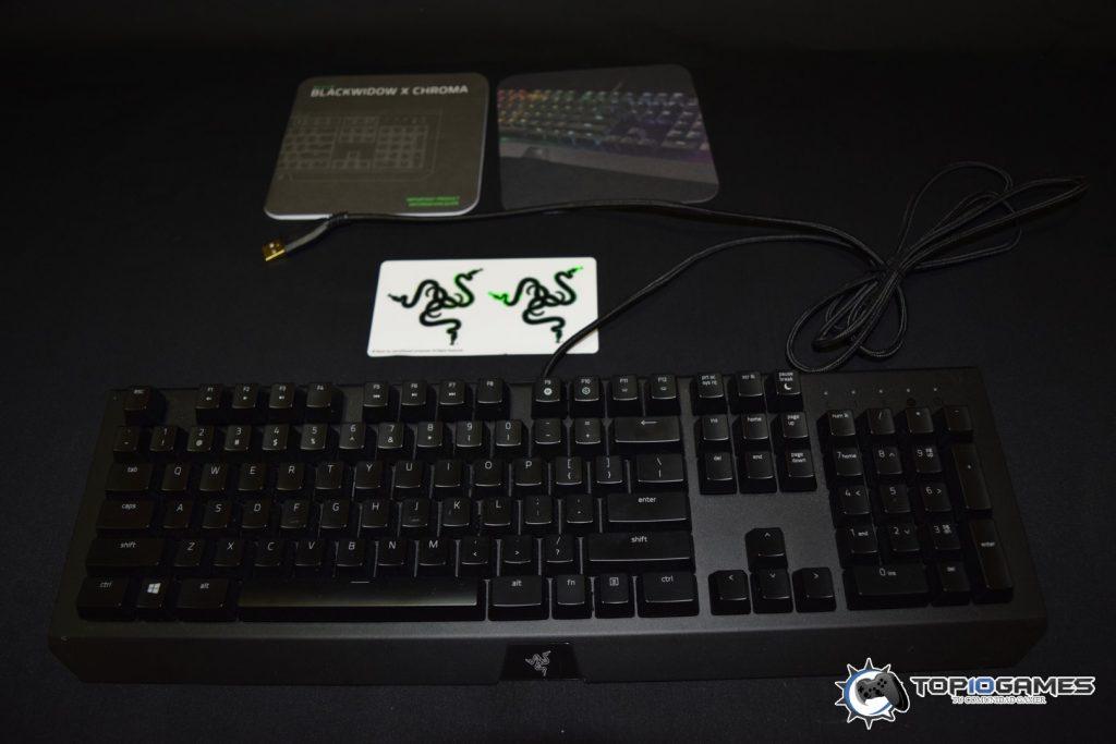 dsc_0010-copiar