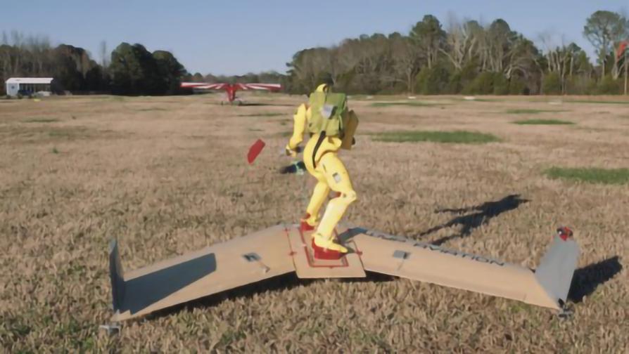 wingboard aerodeslizador